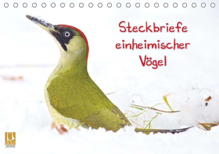 Steckbriefe einheimischer Vögel (Tischkalender 2017 DIN A5 quer) - Coverbild