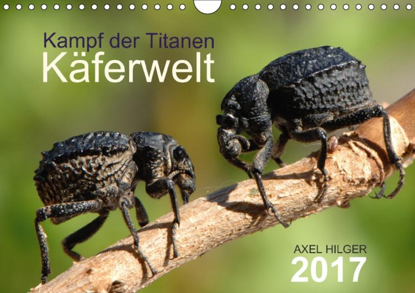 Käferwelt - Kampf der Titanen (Wandkalender 2017 DIN A4 quer) - Coverbild