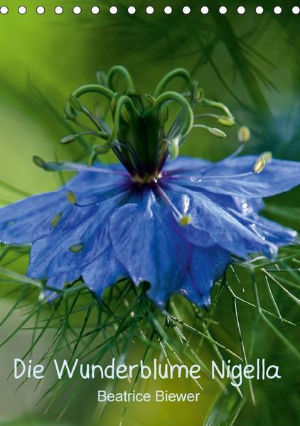 Die Wunderblume Nigella (Tischkalender 2017 DIN A5 hoch) - Coverbild