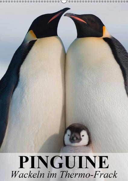 Pinguine - Wackeln im Thermo-Frack (Wandkalender 2017 DIN A2 hoch) - Coverbild