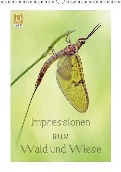 Impressionen aus Wald und Wiese (Wandkalender 2017 DIN A3 hoch) - Coverbild