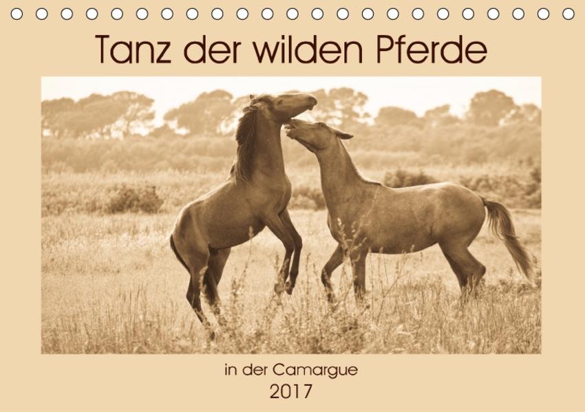 Tanz der wilden Pferde in der Camargue (Tischkalender 2017 DIN A5 quer) - Coverbild