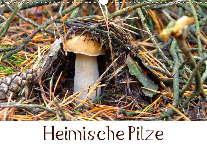 Heimische Pilze (Wandkalender 2017 DIN A3 quer) - Coverbild