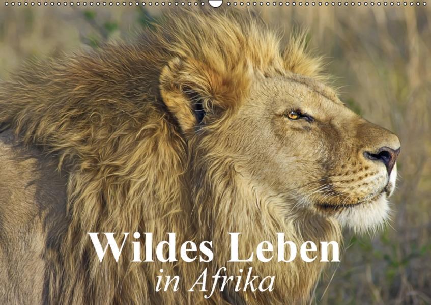 Wildes Leben in Afrika (Wandkalender 2017 DIN A2 quer) - Coverbild