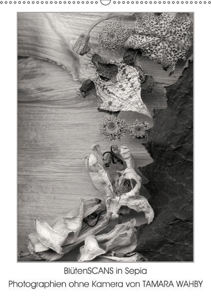 BlütenScans in Sepia, Photographien ohne Kamera von Tamara Wahby (Wandkalender 2017 DIN A2 hoch) - Coverbild
