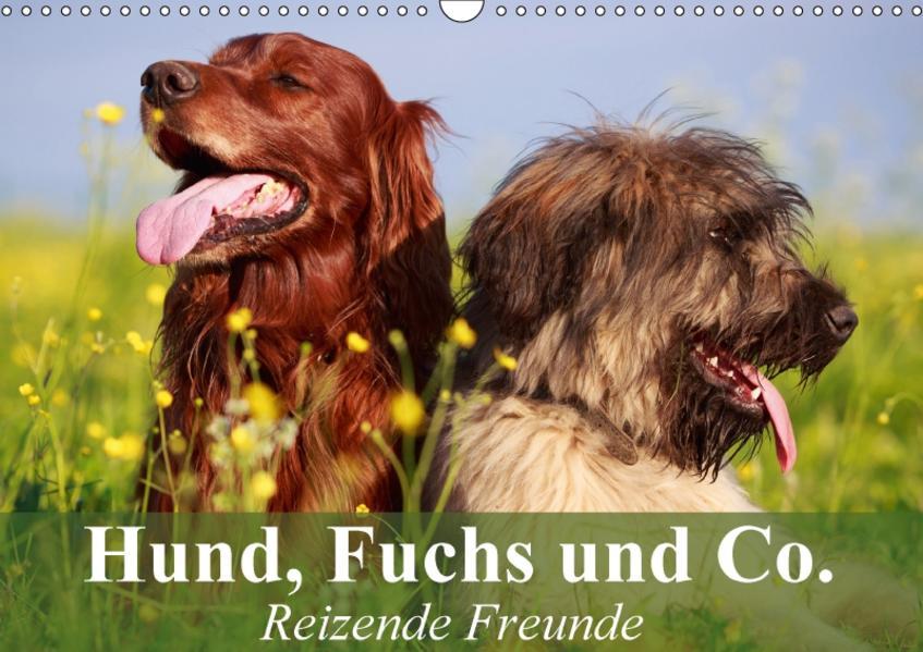 Hund, Fuchs und Co. Reizende Freunde (Wandkalender 2017 DIN A3 quer) - Coverbild