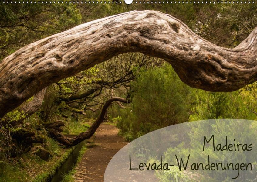 Madeiras Levada-Wanderungen (Wandkalender 2017 DIN A2 quer) - Coverbild