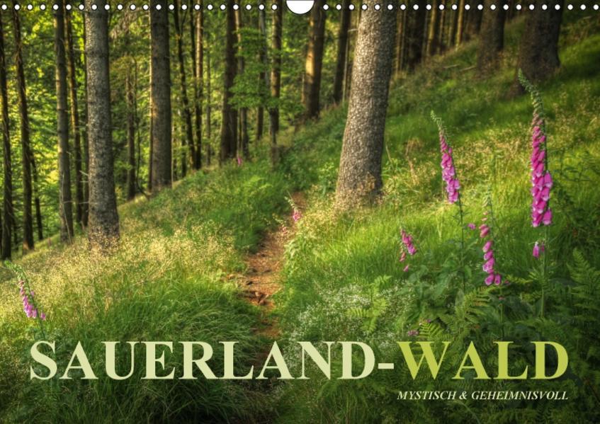 Sauerland-Wald (Wandkalender 2017 DIN A3 quer) - Coverbild
