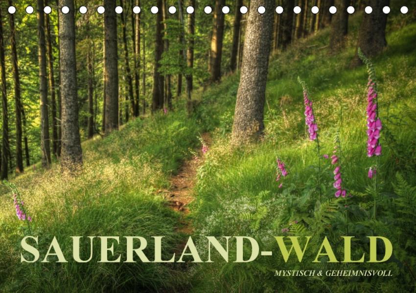 Sauerland-Wald (Tischkalender 2017 DIN A5 quer) - Coverbild