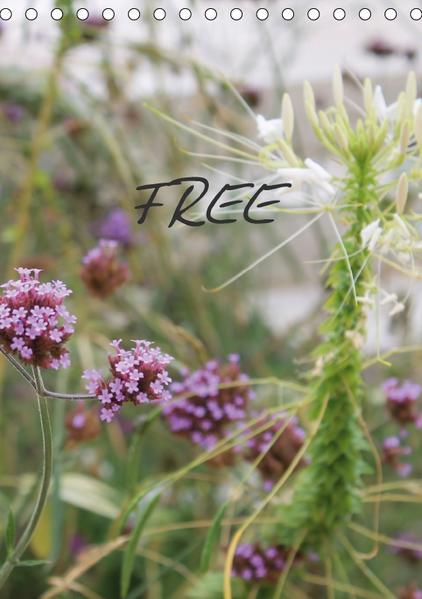 FREE (Tischkalender 2017 DIN A5 hoch) - Coverbild