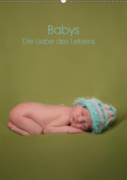 Babys - Die Liebe des Lebens (Wandkalender 2017 DIN A2 hoch) - Coverbild