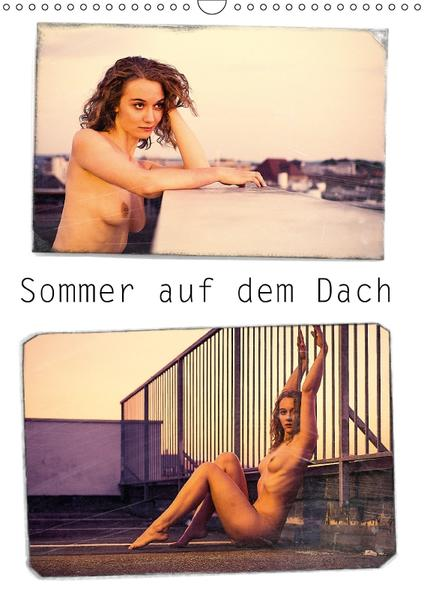 Sommer auf dem Dach (Wandkalender 2017 DIN A3 hoch) - Coverbild