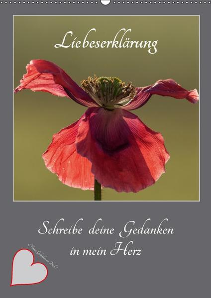 Liebeserklärung - Schreibe deine Gedanken in mein Herz (Wandkalender 2017 DIN A2 hoch) - Coverbild