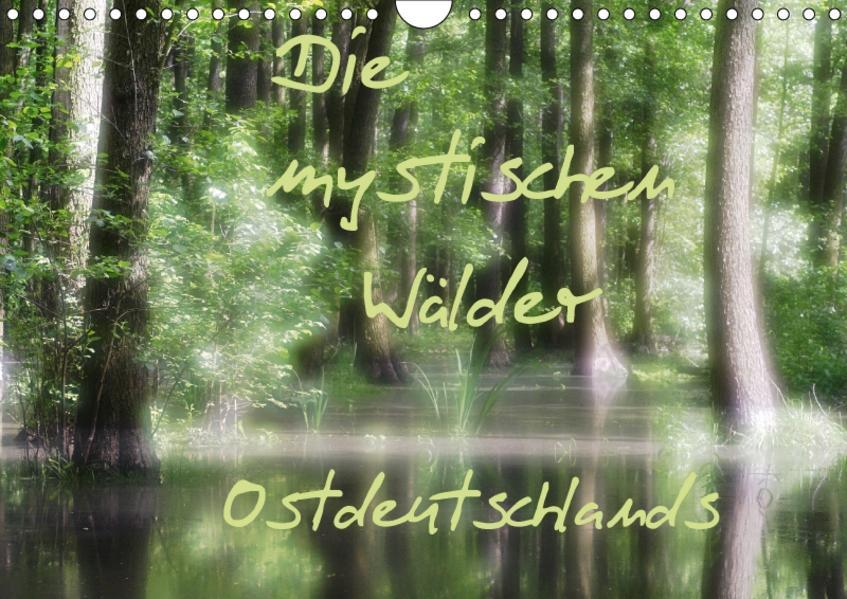 Die mystischen Wälder Ostdeutschlands (Wandkalender 2017 DIN A4 quer) - Coverbild