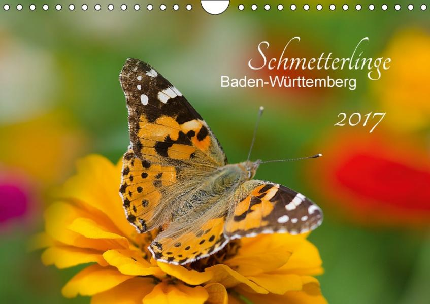 Schmetterlinge Baden-Württemberg (Wandkalender 2017 DIN A4 quer) - Coverbild