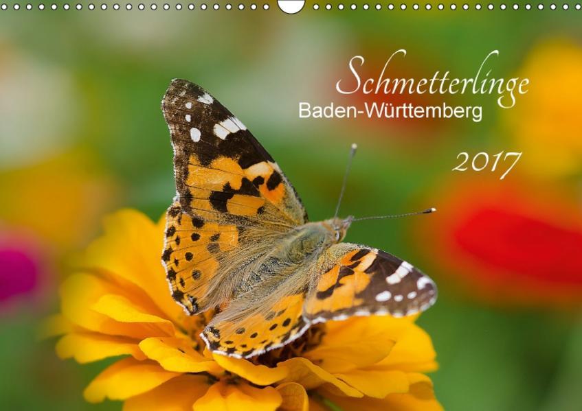 Schmetterlinge Baden-Württemberg (Wandkalender 2017 DIN A3 quer) - Coverbild