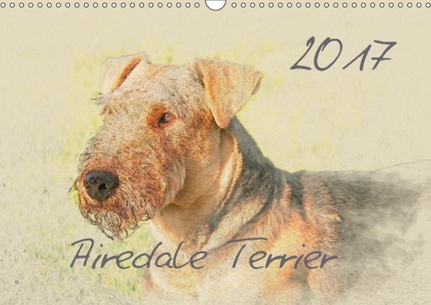 Airedale Terrier 2017 (Wandkalender 2017 DIN A3 quer) - Coverbild