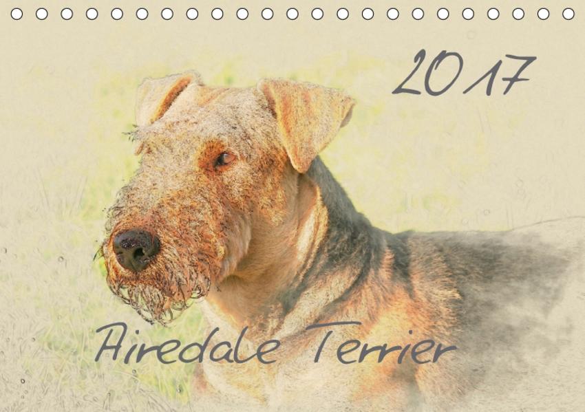 Airedale Terrier 2017 (Tischkalender 2017 DIN A5 quer) - Coverbild
