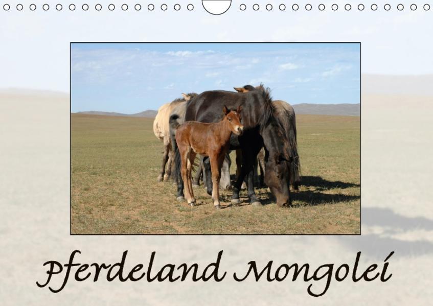 Pferdeland Mongolei (Wandkalender 2017 DIN A4 quer) - Coverbild