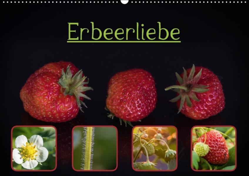 Erbeerliebe (Wandkalender 2017 DIN A2 quer) - Coverbild