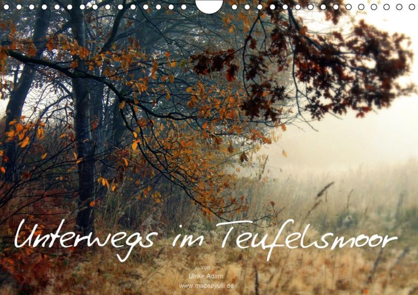 Unterwegs im Teufelsmoor (Wandkalender 2017 DIN A4 quer) - Coverbild