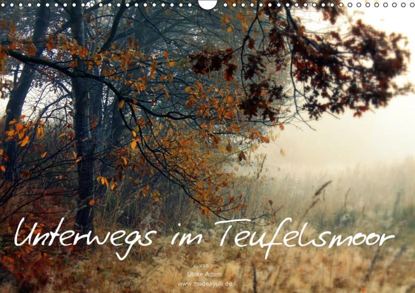 Unterwegs im Teufelsmoor (Wandkalender 2017 DIN A3 quer) - Coverbild