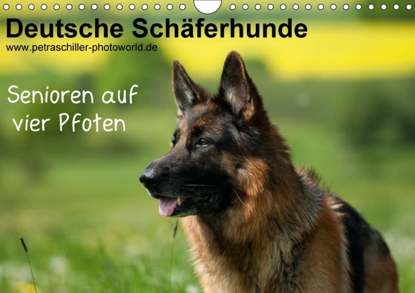Deutsche Schäferhunde - Senioren auf vier Pfoten (Wandkalender 2017 DIN A4 quer) - Coverbild