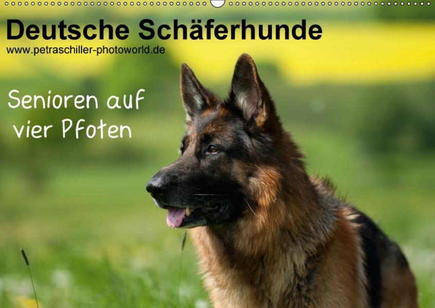 Deutsche Schäferhunde - Senioren auf vier Pfoten (Wandkalender 2017 DIN A2 quer) - Coverbild