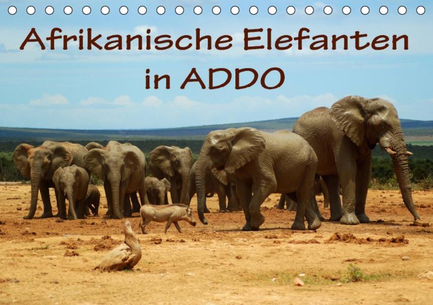 Afrikanische Elefanten in ADDO (Tischkalender 2017 DIN A5 quer) - Coverbild