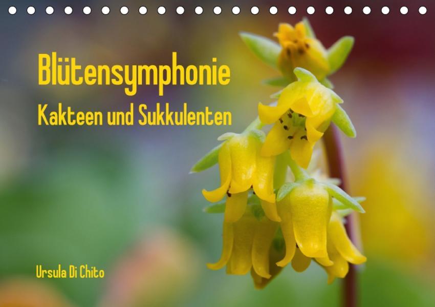 Blütensymphonie - Kakteen und Sukkulenten (Tischkalender 2017 DIN A5 quer) - Coverbild