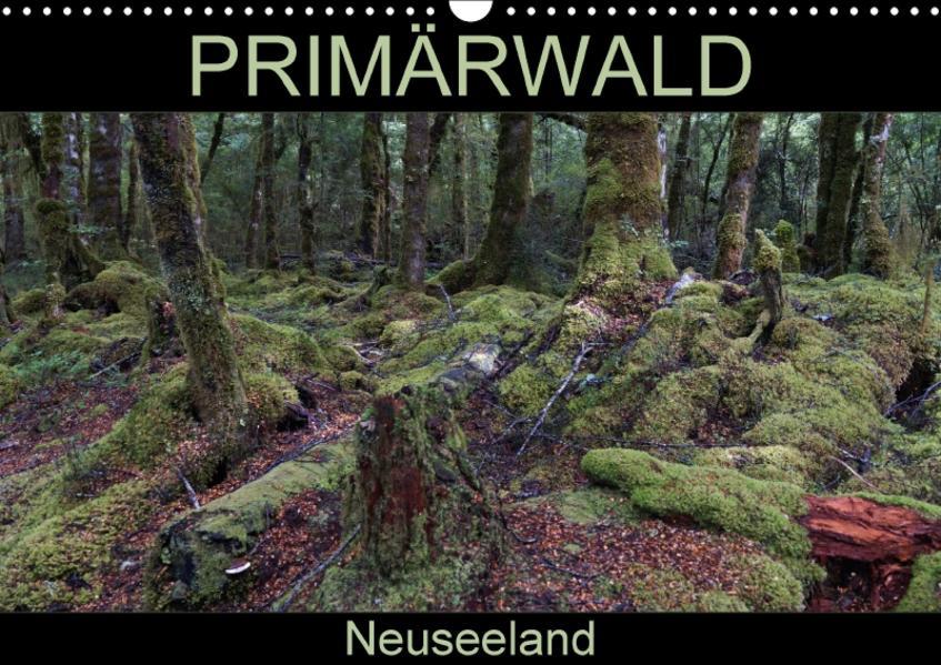 Primärwald - Neuseeland (Wandkalender 2017 DIN A3 quer) - Coverbild
