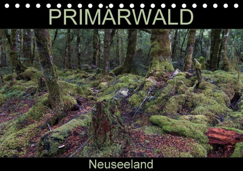 Primärwald - Neuseeland (Tischkalender 2017 DIN A5 quer) - Coverbild
