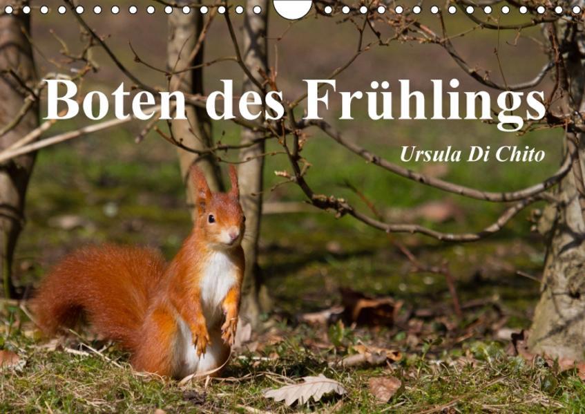 Boten des Frühlings (Wandkalender 2017 DIN A4 quer) - Coverbild