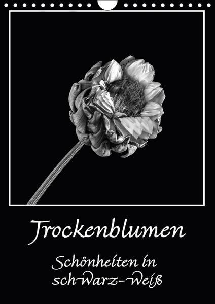 Trockenblumen Schönheiten in schwarz-weiß (Wandkalender 2017 DIN A4 hoch) - Coverbild