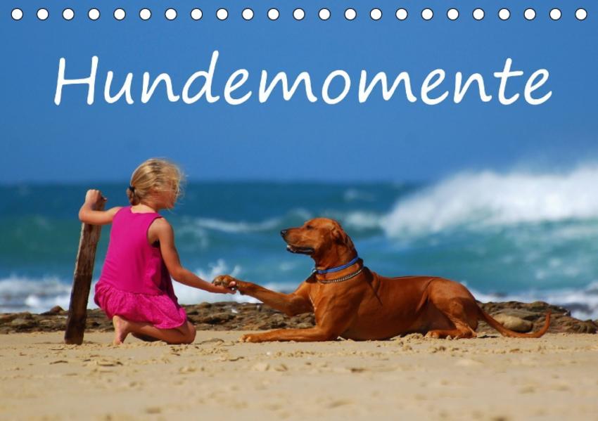 Hundemomente (Tischkalender 2017 DIN A5 quer) - Coverbild