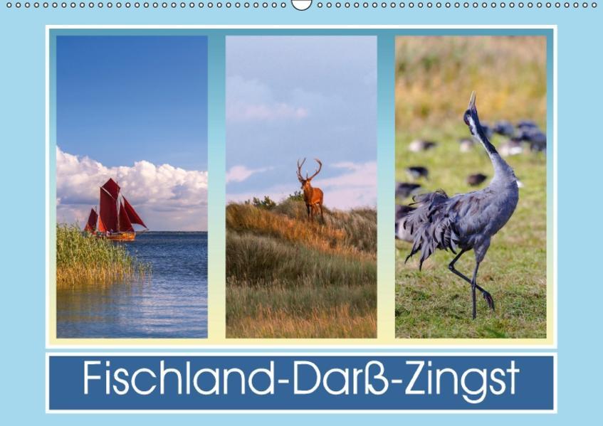 Fischland-Darß-Zingst (Wandkalender 2017 DIN A2 quer) - Coverbild