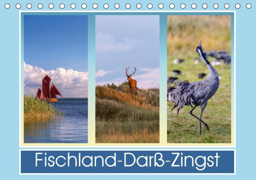 Fischland-Darß-Zingst Laden Sie PDF-Ebooks Herunter