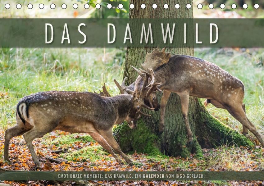 Emotionale Momente: Das Damwild. (Tischkalender 2017 DIN A5 quer) - Coverbild