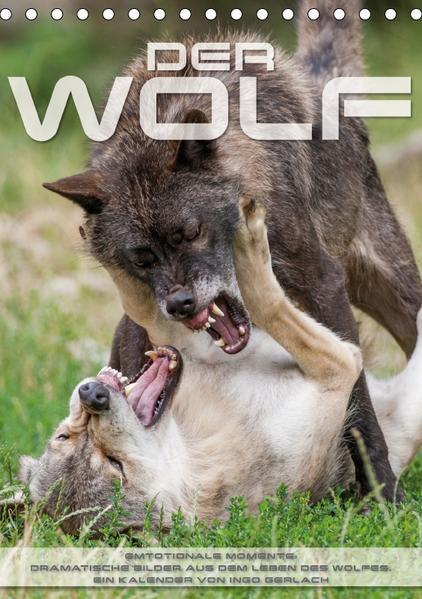Emotionale Momente: Der Wolf. (Tischkalender 2017 DIN A5 hoch) - Coverbild