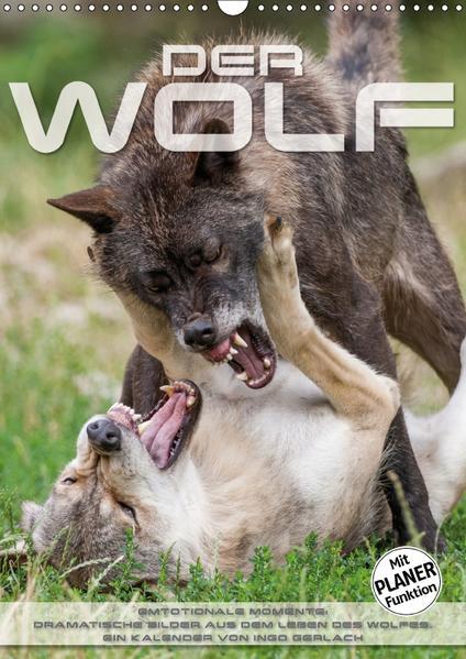 Emotionale Momente: Der Wolf. (Wandkalender 2017 DIN A3 hoch) - Coverbild
