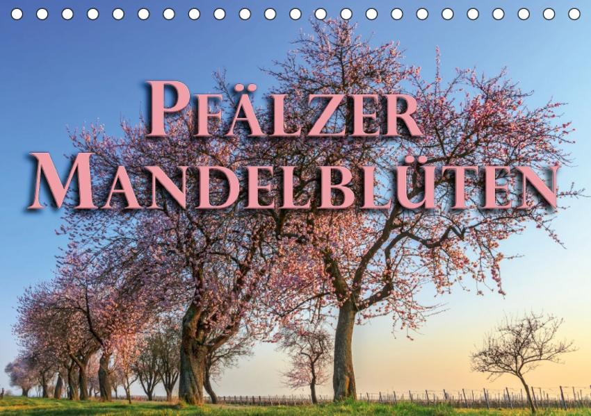 Pfälzer Mandelblüten (Tischkalender 2017 DIN A5 quer) - Coverbild