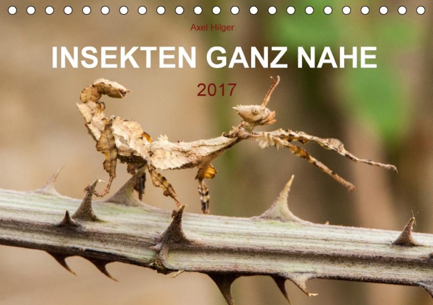INSEKTEN GANZ NAHE (Tischkalender 2017 DIN A5 quer) - Coverbild