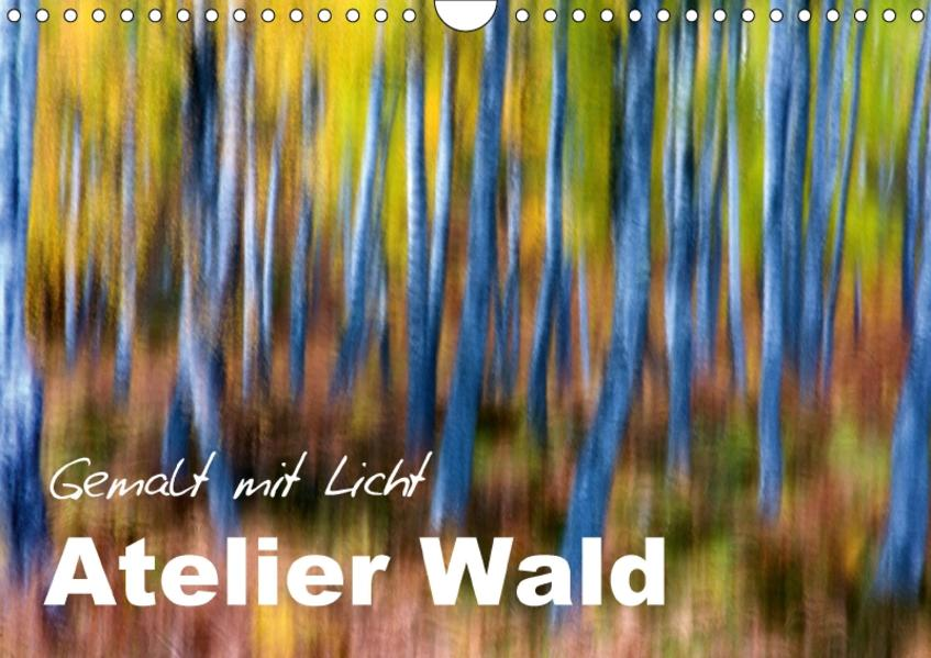 Atelier Wald - gemalt mit Licht (Wandkalender 2017 DIN A4 quer) - Coverbild