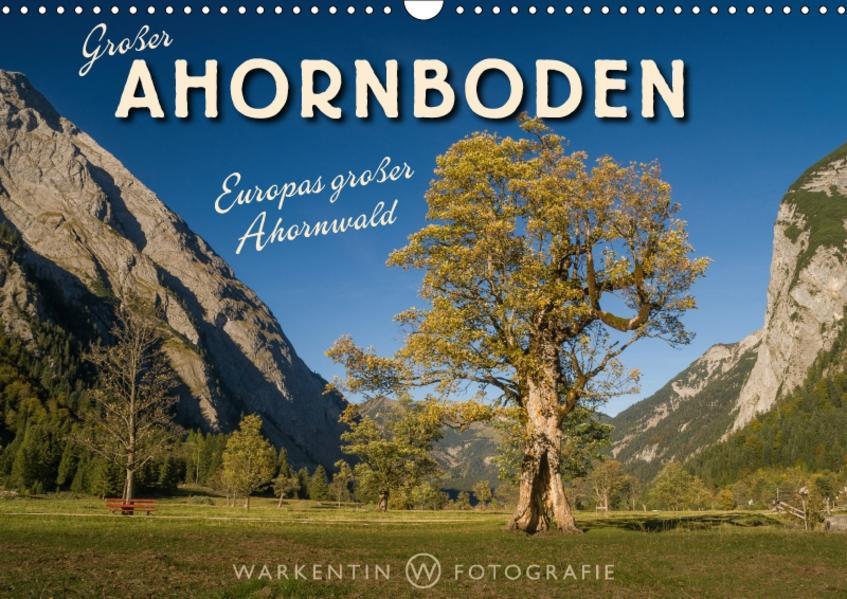 Großer Ahornboden - Europas großer Ahornwald (Wandkalender 2017 DIN A3 quer) - Coverbild