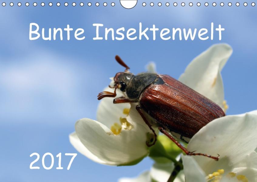 Bunte Insektenwelt (Wandkalender 2017 DIN A4 quer) - Coverbild
