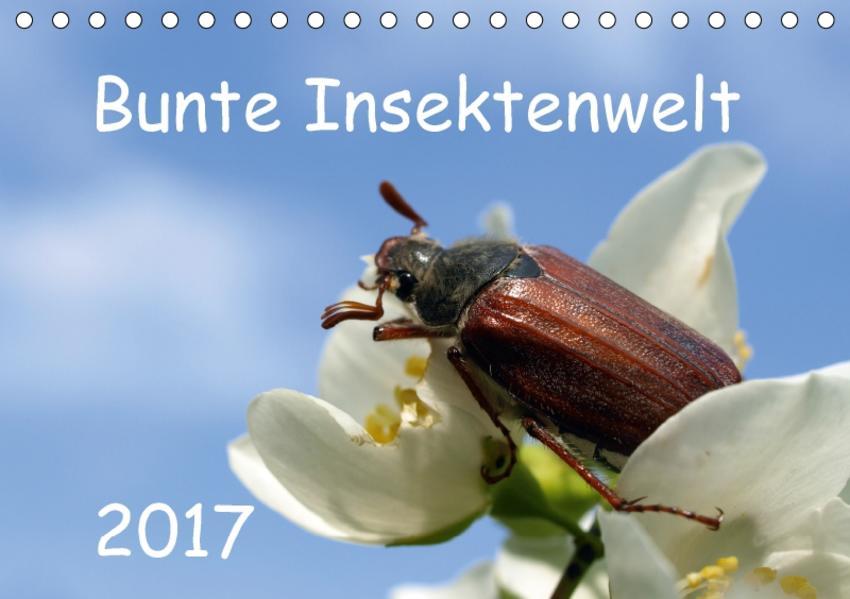 Bunte Insektenwelt (Tischkalender 2017 DIN A5 quer) - Coverbild