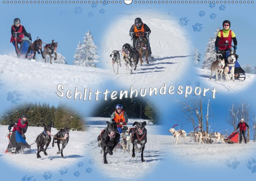 Schlittenhundesport (Wandkalender 2017 DIN A2 quer) - Coverbild