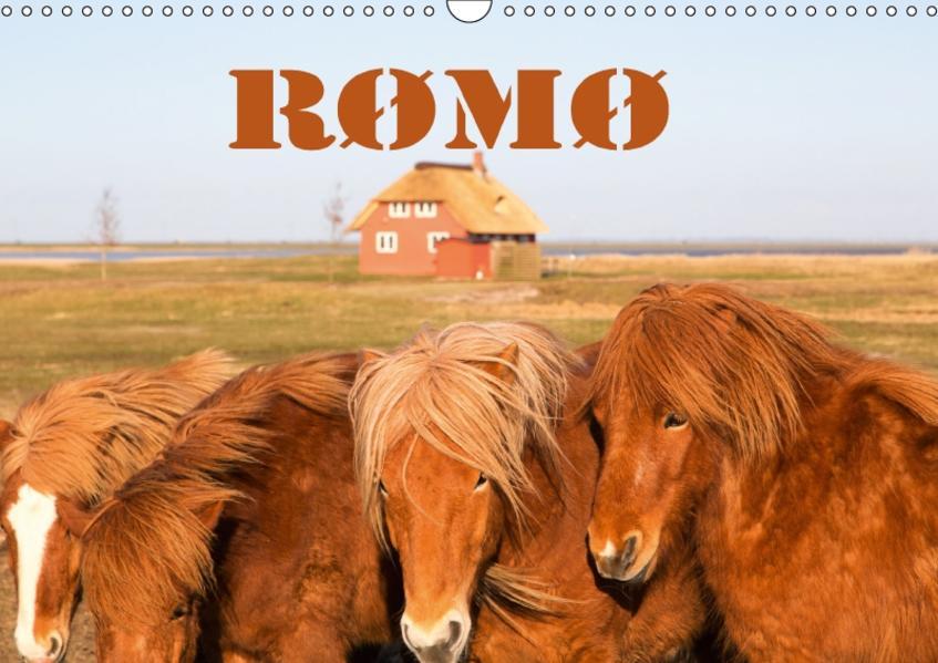 Rømø (Wandkalender 2017 DIN A3 quer) - Coverbild