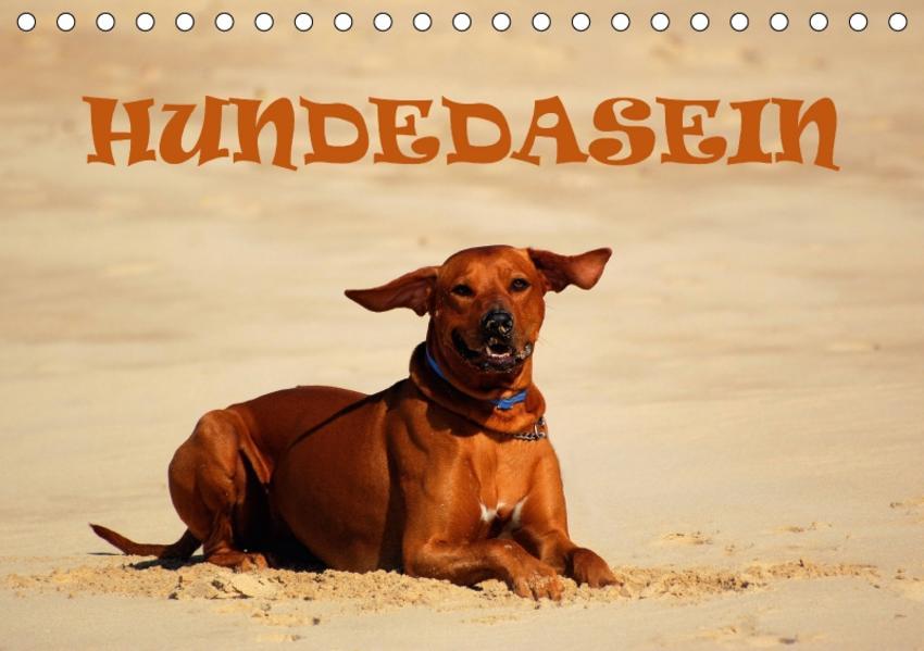 HundedaseinAT-Version  (Tischkalender 2017 DIN A5 quer) - Coverbild