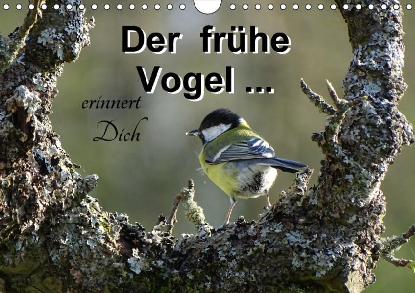 Der frühe Vogel ... erinnert Dich (Wandkalender 2017 DIN A4 quer) - Coverbild